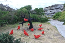 redcrows